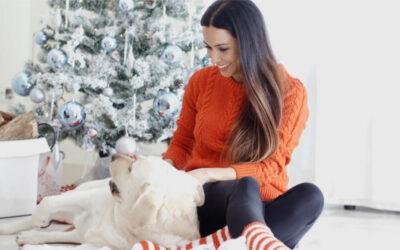 Cómo reducir gastos en el cuidado de tu perro sin afectar a su bienestar